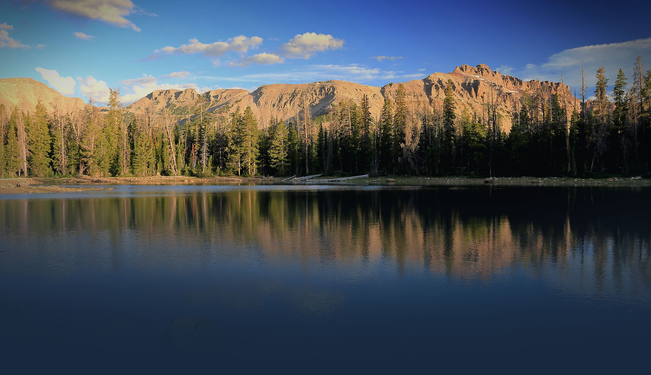 Available forms uinta county wy official website county alerts solutioingenieria Gallery