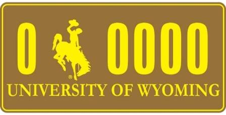 University of Wyoming Plate Example